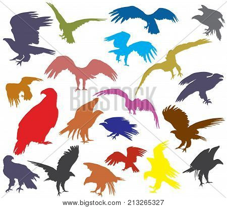 Set of vector colorful cut out flying and sitting silhouettes of american eagle (white-tailed eagle bald eagle) isolated on white background