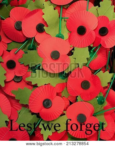 Red paper poppies with green leaves with Lest We Forget text. Symbol for Remembrance Day. Poppy is a military symbol remembering those who died in war.