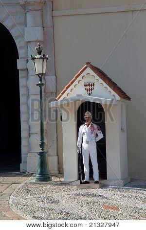 Single Monaco Guard