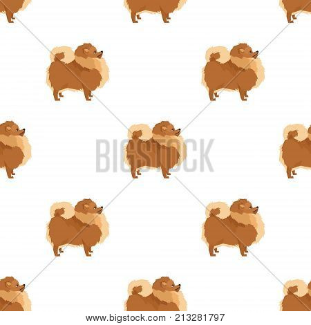 Seamless pattern Pomeranian dog Geometric style Vector