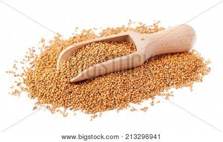 Mustard seeds in wooden scoop spoon isolated on white background. Mustard seeds in wooden scoop