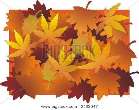 Leaves Bg