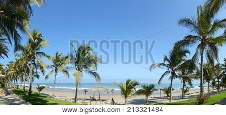 Panoramic iew of Mancora, Peru with palm trees on a clear day