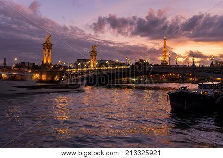 Alexandre III Bridge over Seine river at violet twilights, Paris, France