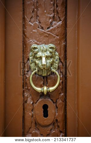 door handle in the form of a lion's head