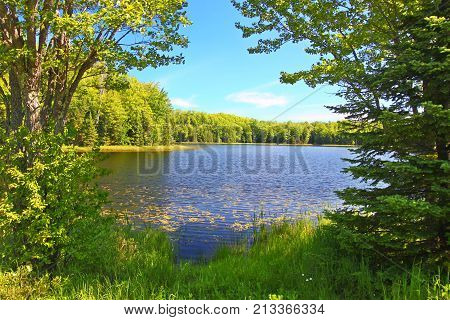 Forest trees frame a scenic view of Mabel Lake in the Northern Highland American Legion State Forest of Wisconsin