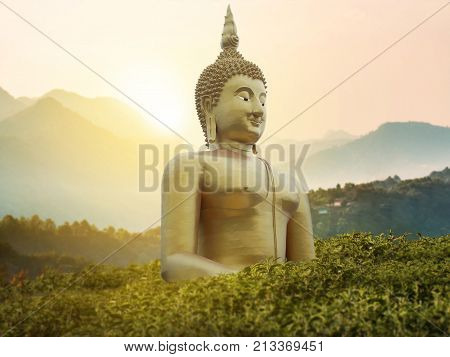 big great powerful Buddha statue in gold color in the middle of green park on the mountain with beautiful sunset or sunrise and wonderful nature scene at background. Buddha image for Buddhists