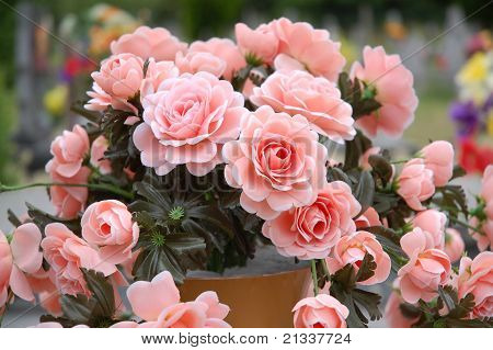 A bouquet of roses.