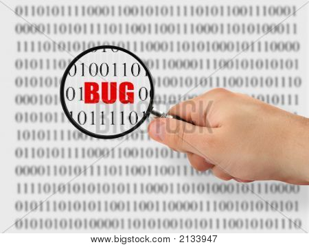 Searching For Bug
