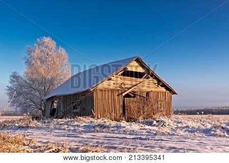 The rising sun colors the old barn house beautifully. The morning is cold at the Northern Finland.