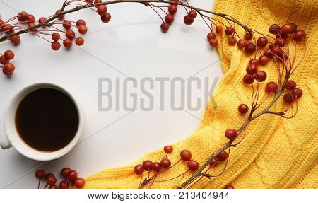 White background with branches with small apples and yellow sweater and a Cup of coffee, close-up, Top view