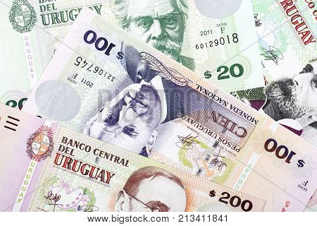 Uruguayan Pesos, a background with Uruguayan money