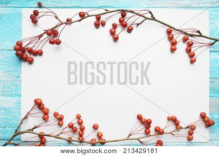 White background with branches with small apples,  close-up, Top view