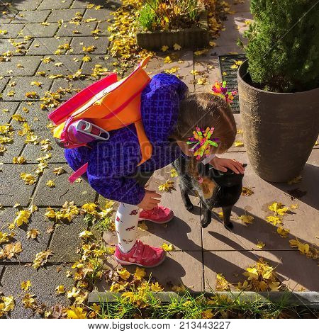 Little girl and pet kitten meet together. Girl returned home from school and her cat meets her at the door. Child is stroking cat. Caring for animals concept. Love animals