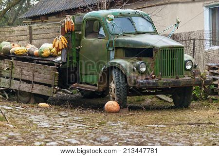 Old rusty abandoned farm truck, old broken truck on a farm with pumpkins and corn