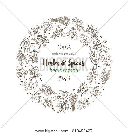 Poster frame template with hand drawn sketch herbs and spices for farmers market menu design. Vector illustration page decoration culinary herbs in ink retro style.