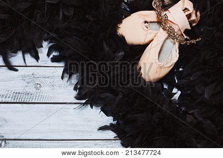 Black Swan Ballet Props