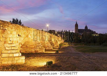 Catedral Nueva de Salamanca and Roman Bridge. Salamanca Castile and Leon Spain.