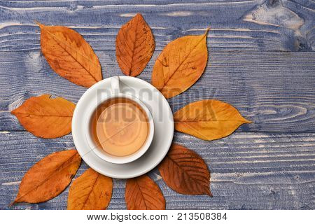 Autumn Warm Drink Concept. Hot Beverage On Saucer