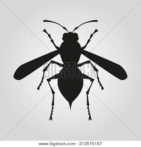 Icon of wasp silhouette on the white background. Vector illustration.