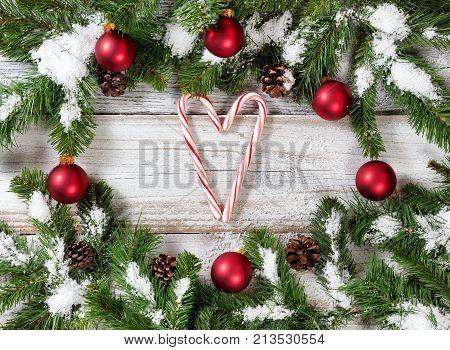Candy Canes with Snowy Christmas red ornaments hanging on fir tree branches