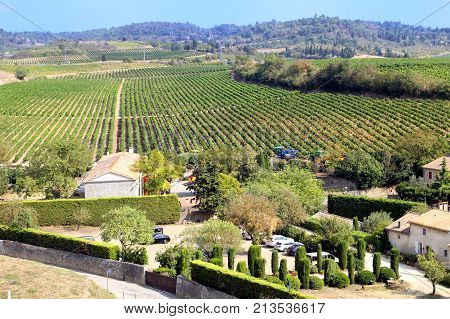 Carcassonne, Languedoc-roussillon, France - August 24 2017: Rows Of Grape Vines On A Gentle Slope In