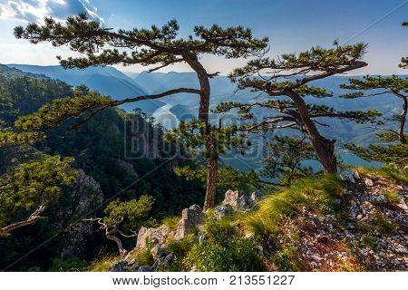 View from famous Banjska stena on Drina river in Tara National Park, Serbia