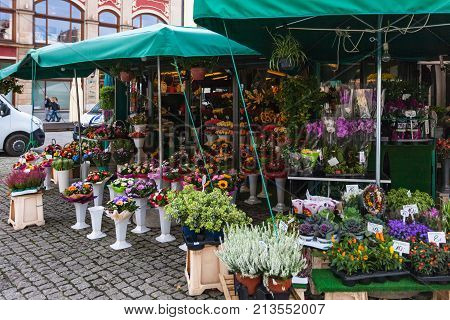 Flower Shop On Plac Solny Square In Wroclaw City