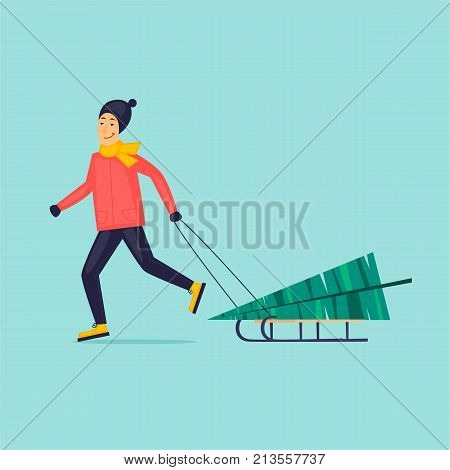 Guy is dragging a Christmas fir-tree on a sleigh. Flat design vector illustration.