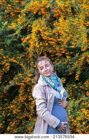 Beautiful Young Happy Pregnant Woman Staying In Autumn Park Touching Her Belly