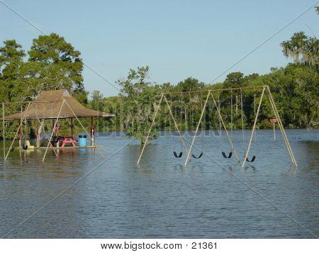 Swim To Swing