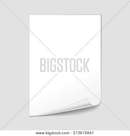 Empty paper sheet blank with page curl, realistic 3d illustration.