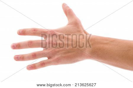 Hand with fingers spread out well-groomed on a white isolated background