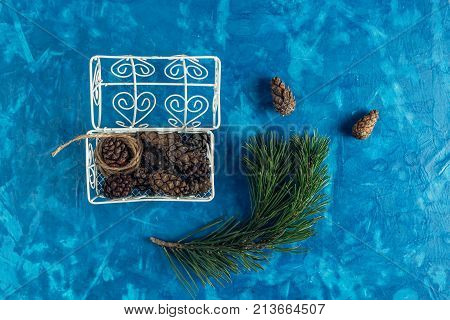pine cones in a beautiful vintage chest next to a branch of a pine tree on a blue homogeneous background. christmas concept