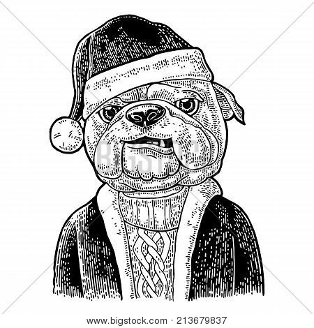 Dog Santa claus in hat coat sweater. Vintage black engraving illustration for poster. Isolated on white background
