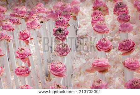 Pink Lotus Flowers Decoration At Flower Market.