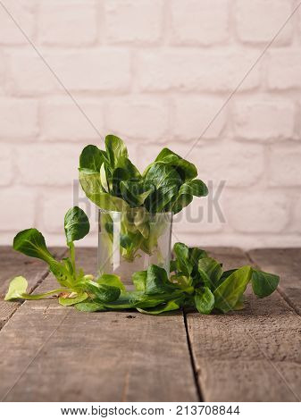 Fresh organic mache in a glass on a rustic wooden kitchen table healthy food concept