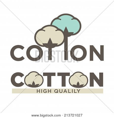 Cotton labels or logo for pure 100 percent natural cotton textile tag. Vector isolated icon for clothing label or eco fabric design template of leaf, flower and thread in needle