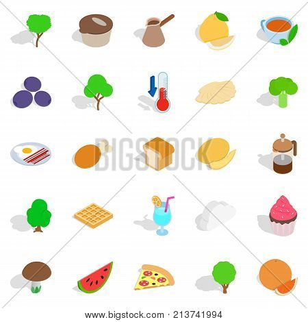 Body cleansing icons set. Isometric set of 25 body cleansing vector icons for web isolated on white background