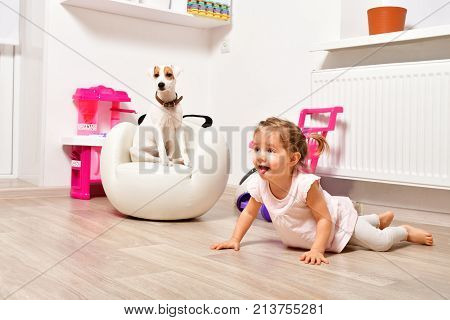 Cute naughty girl and a young dog breed Parson Russell Terrier in the children's room