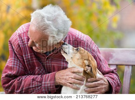 Old Man With Dog On Bench In Park