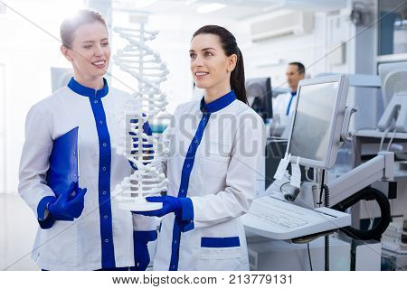 Research work. Two cheerful beautiful female researchers studying  DNA evolution and holding DNA model  and standing in the laboratory while  one of them keeping blue folder on hand