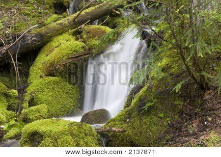 Trish Creek Waterfall