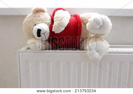 teddy bear on the battery or system of heating in the room