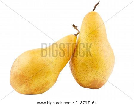 Two juicy pears lean against each other on a white isolated background