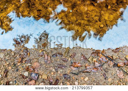 Flat Top View Of Red Orange Creek Water And Sand During Autumn Fall Leaves, Reflection And Clear Riv