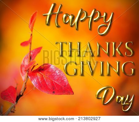 Happy Thanksgiving Greeting, autumn background of fall colors