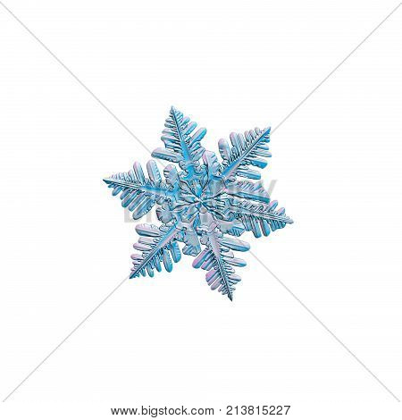 Snowflake isolated on white background. Macro photo of real snow crystal: small stellar dendrite with dense array of side branches on each arm, glossy relief surface and fine hexagonal symmetry.