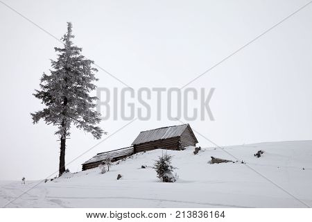 Old Wooden Huts And Frozen Pine In Winter Mountains With Gray Fog Sky