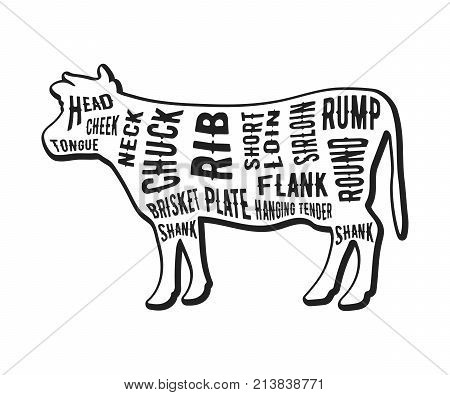 Beef cuts template. Butcher guide isolated on white background. Vector illustration